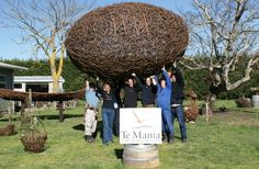 Just LOVE this giant rubgy ball made with grape prunings at Te Mania Wines