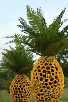 Google Image Result for http://4.bp.blogspot.com/_R8g0bl422cs/SdC3kqxXfrI/AAAAAAAAHf0/2WY3BdL4O2g/s400/pineapple.jpg