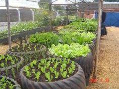 Building A Raised Garden Bed with legs For Your Plants Tire Garden, Veg Garden, Vegetable Garden Design, Edible Garden, Garden Planters, Garden Beds, Balcony Herb Gardens, Outdoor Gardens, Building A Raised Garden