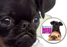 Brussels Griffon NOSE BUTTER® Handcrafted All by TheBlissfulDog