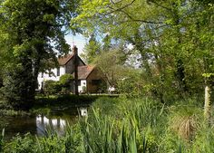 The Bush Inn, Ovington, Hampshire. Gastro Pubs, Best Pubs, British Pub, Hampshire, Getting Out, Family History, Home And Garden, Backyard, Exterior