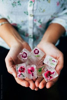 Woman Holding Flowery Ice Cubes by Marija Savic for Stocksy United