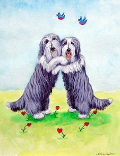 Bearded Collies! by Amy Wright on Etsy