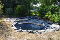 natural swimming pools ponds - Yahoo Search Results