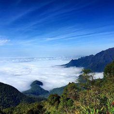 Nas nuvens.... (2.300m) parque nacional de itatiaia! by ffreixosa