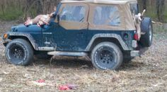 """Surprisingly, all of us got deer on opening day; and, yes, we actually hauled our deer out of the woods piled up on the jeep!  """"Hunting Redneck Style"""""""