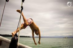 Dive in to #thebubbaslife! Nothing like a swim in the #caribbeansea  #bubbashouse #bocasdeltoro #bastimentos #panama #islandlife #adventure #ocean #fun by bubbashouse