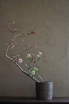I love the open, simplicity that Ikebana provides. Ikebana by Mario HIRAMA, Japan Ikebana Arrangements, Ikebana Flower Arrangement, Floral Arrangements, Arte Floral, Deco Floral, Floral Design, Japanese Flowers, Japanese Art, Wabi Sabi