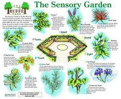 1000 images about sensory garden ideas on pinterest for Garden design ideas for disabled