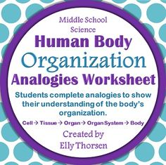 Give middle school students more of a challenge with body organization by having them complete analogies about cells, tissues, organs, and organ systems.