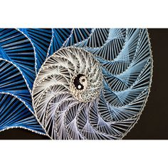 String art Nautilus Yin Yang Abstract pattern Fibonacci