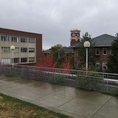 Hanging out on campus today for the Homecoming #WSU Football game vs. UCLA! #gocougs #beatucla #cougars #pullman #football