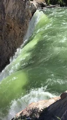 Discover & share this Yellowstone GIF with everyone you know. GIPHY is how you search, share, discover, and create GIFs. Beautiful Nature Scenes, Amazing Nature, Beautiful Places, Yellowstone National Park, National Parks, Nature Photography, Travel Photography, Amazing Gifs, Live Picture