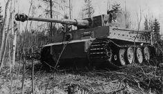 Tiger I number 3 of Schwere Panzer-Abteilung 502 near Leningrad 1943 left side