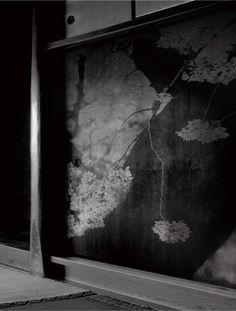 "WAKASUGI Kenji(若杉 憲司 Japanese) from the series ""Fusuma""  2012  Cherry blossoms  Thanks http://iamjapanese.tumblr.com/ (more)"