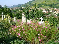 Cimetière coloré  Roumanie