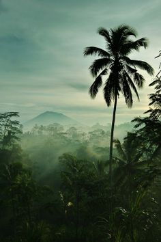 Bali, Indonesia a beautiful misty place