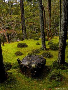 Saihoji Temple--Moss Garden, Kyoto, Japan @NaotoTheObsure photostream on Flickr