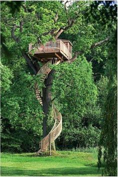 Tree house anyone? View tree houses of different shapes and sizes in this albu… Tree house anyone? View tree houses of different shapes and sizes in this album here: theownerbuilderne… Is building a tree house on your backyard project list? Future House, My House, Tree House Designs, Diy Tree House, Adult Tree House, Tree House Plans, Tree House Deck, Indoor Tree House, Outdoor Living