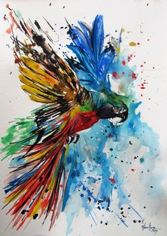 Image result for how to paint maCAW  step by step