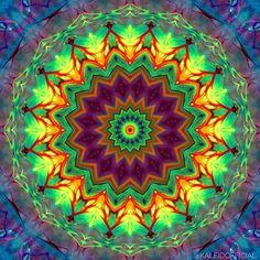 Alien Vision  #kaleidofficial  #kaleidoscope #kaleidoscopic #mandala #mandalaart #symmetry #symmetric #alien #zentangle #zentangles #abstract #abstractart #fluidart #colorful #digitalart #digitalpainting #visualart #visualdesign #mirrorlab #thegraphicspr0ject  #fa_hypnotic  #psychedelic #psychedelicart #trippy #trippyart #pattern #modernart #sharingart #meditation #art_sanity
