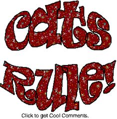 Cats Rule Glitter Text Glitter Graphic, Greeting, Comment, Meme or GIF