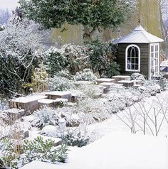 snowy garden & adorable, tiny shed
