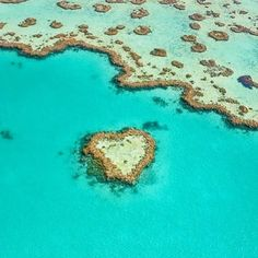 This time last week we were gearing up to go on our scenic flight over the Great Barrier Reef and White Haven Beach. Here's just one of the many sights from that day! Breathtaking  @craig_giarc #heartreef #scenicflight #yearoffirsts #greatbarrierreef #hamiltonisland #whitsundays #loveourcountry #blessed #specialmoments #breathtaking #ourview #australia #allyouneedislove #babymoon #babycrannah by hannah_o_donnell http://ift.tt/1UokkV2