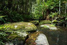        #kalimnafallstrail #waterfall #lorne #lovelorne #victoria #greatoceanroad #seegor #visitgreatoceanroad #igersgreatoceanroad #visitvictoria #australia #seeaustralia #nature #naturelover #goodvibe #chill #thechilllife #likeforlike #like4like #l4l #followforfollow #follow4follow #f4f by eedouard1990