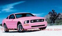 pink love mustangs