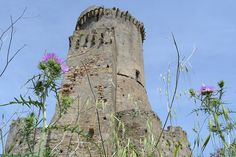 #invasionidigitali #veliAMO by puntoArchIng, via Flickr La Torre #Salerno #Elea #Velia