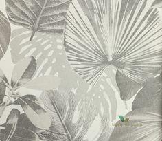 roślinny botaniczny liście liść bananowiec bananowca botaniczna, egzotyczna, egzotyczny,
