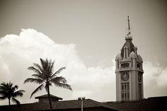 Hawaii 2012 Timeless 3002