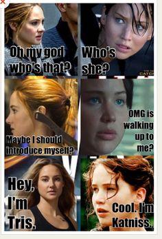 Divergent meets Hunger Games