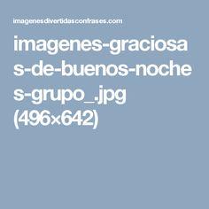 imagenes-graciosas-de-buenos-noches-grupo_.jpg (496×642)