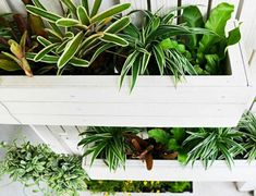 Creative Ways Of Vertical Garden To Try Top View Small Vertical Garden Vertical Gardening Ss Feature - avangraf. Building A Trellis, Vertical Garden Design, Blank Walls, Top View, Garden Projects, Perennials, This Or That Questions, Creative, Plants