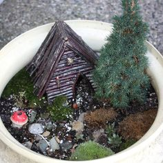 fairy house idea, my kids will have one of these in their rooms. best idea ever.