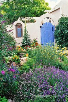 262 Best Outdoor Spaces Drought Tolerant Amp California