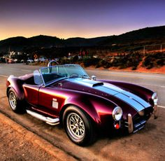 LOVE this car. My dream machine. Want in blue, a #72 on the side door. Ford AC Shelby Cobra. Beautiful!