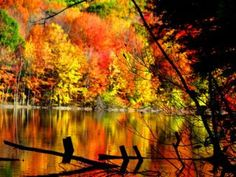 Gorgeous Connecticut fall scenery