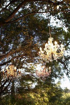 chandeliers in trees