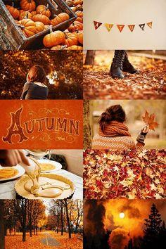 Hot Buttered Rum, Lillet Berry, Fall Inspiration, Cute Fall Wallpaper, Fall Drinks, Autumn Cozy, Autumn Forest, Autumn Art, Autumn Trees