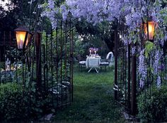 wrought iron + wisteria