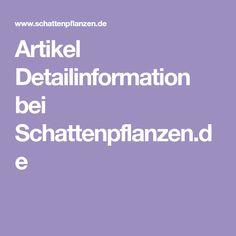 Artikel Detailinformation bei Schattenpflanzen.de