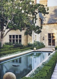 """surroundedbybeauty-gardendesign: """"Foundation = Knockout Roses hedged with boxwood // Pool = Lamb's Ear bordering a boxwood hedge """" Swimming Pools Backyard, Swimming Pool Designs, Garden Pool, Backyard Landscaping, Backyard Ideas, Garden Ideas, Patio Gardens, Backyard Designs, Rooftop Garden"""