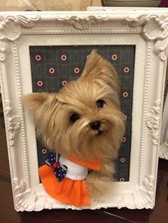 Needle wool felting puppy portrait on picture frame, I