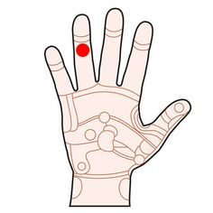Ved at trykke eller stimulere forskellige punkter i hånden kan du påvirke forskellige organer i kroppen.
