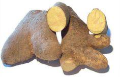 Jamaica has numerous varieties of yam & everyone has their favorite…..