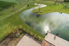 ZOMERGROEN. Meanderende zwemvijver - De Standaard: http://www.standaard.be/cnt/dmf20150813_01816783?utm_source=facebook