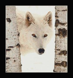 White Wolf Between Birch Trees Counted Cross by InstantCrossStitch